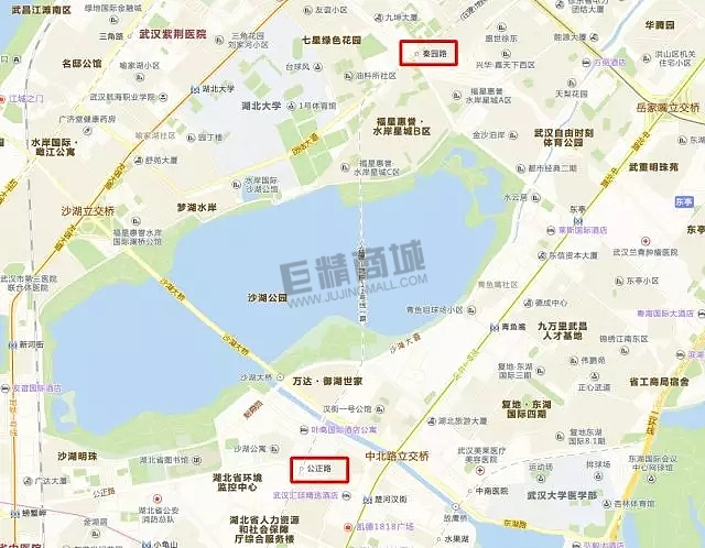 解析武汉轨道交通12号奇特的一段:下穿沙湖,成为快速过湖通道